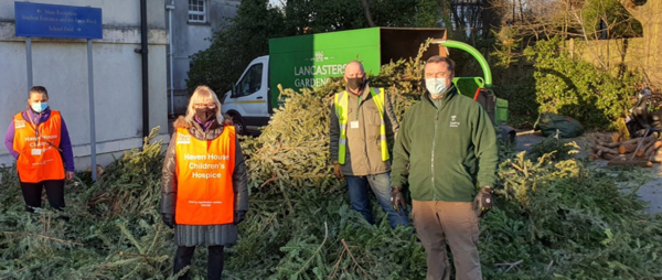 500 pre-loved Christmas trees were collected from our local community